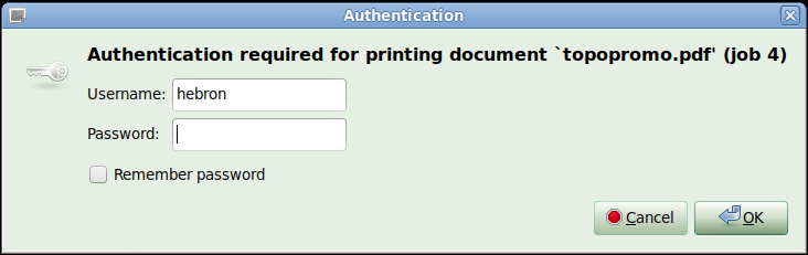 Job Authentication window
